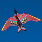 Design Kites