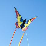 Theme kites