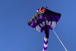 "Peter Lynn Stinga Ray ""mini"" purple"