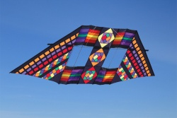 Barbara Meyer Swept Wing Double Box Kite