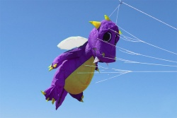 Fauchi 2m Body purple, belly and prongs yellow, wings white
