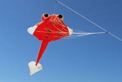 Micro Ray Body red/red, edges white
