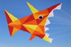 Peter Lynn Maxi Piranha rot/orange/gelb/gold