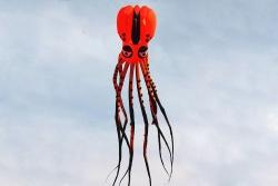 Octopus Kite 10m orange-black, used item