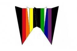 Parafoil 20 schwarz-rainbow
