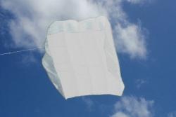 Peter Lynn Pilot Kite 4.5m² weiss
