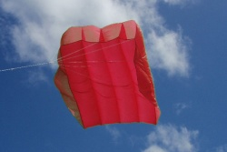 Peter Lynn Pilot Kite 12m² red