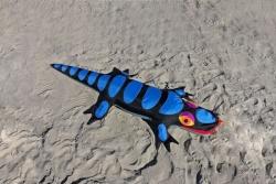 Lizard Sandimal schwarz