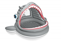Intex Roaring Shark Pool