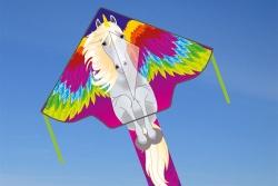 Simple Flyer 120 Pegasus