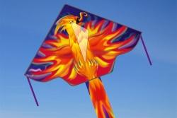 Simple Flyer 120 Phoenix
