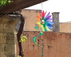 Swinging Flower rainbow