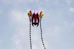 Trilobite Kite 2 red