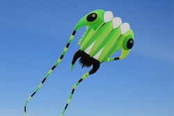 Trilobite Kite 7 grün-gelb