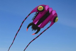 Trilobite Kite 7 purple