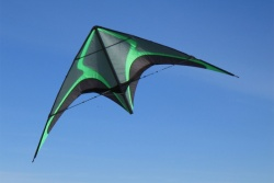 Zodarion green