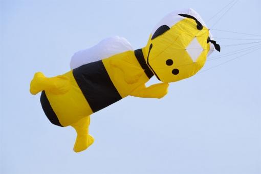 Bee Kite 3m