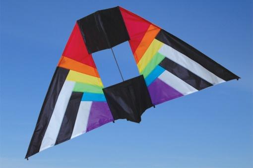 5.5 ft. Box Delta Kite Rainbow Spectrum