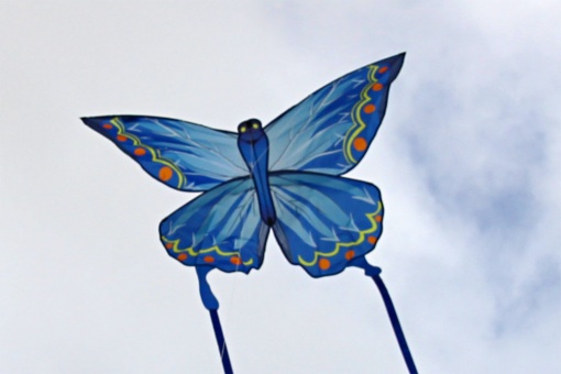 Ecoline Butterfly Kite Indigo