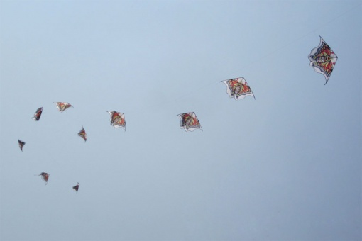Butterfly Kite Train