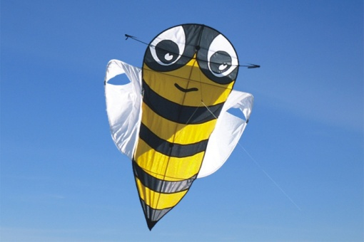 Buzzer Bee