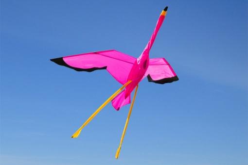 Flamingo 3D
