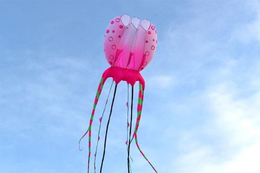 Giant Jellyfish pink