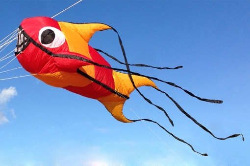 Micro Fish