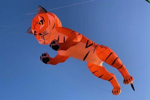 Midi Tiger orange&black