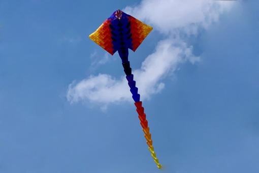 "Peter Lynn Patchwork Manta Ray ""midi"" rainbow"