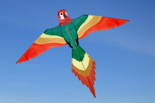 """""""Papagei"""" Parrot"""