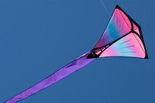 Prism Pica Iris Iris