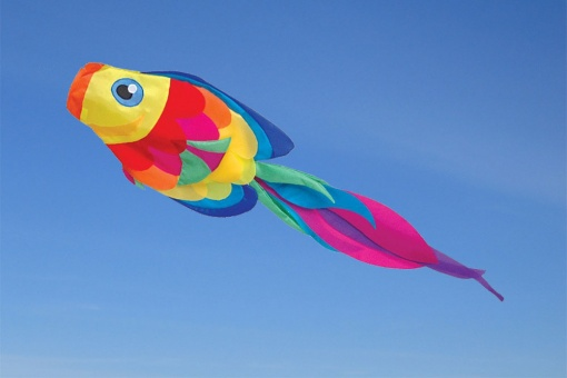 Rainbow Tang Fish Windsock