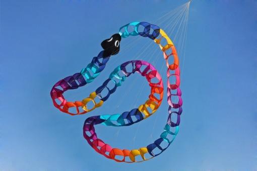 Riviera Snake Wheel