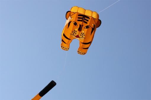 Tiger Pilot