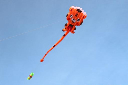 Tiger Soft Kite