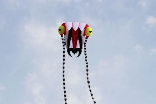 Trilobite Kite 2 rot