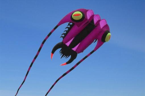 Trilobite Kite 10 purple