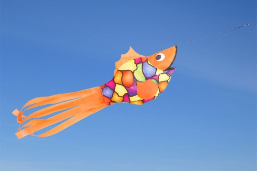 Windsock Dazzling Fish