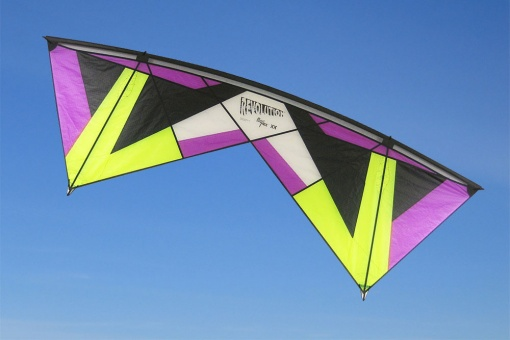 Revolution Reflex XX Purple/Lime/Black