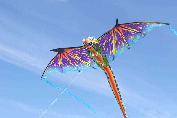 3D Dragon New Design