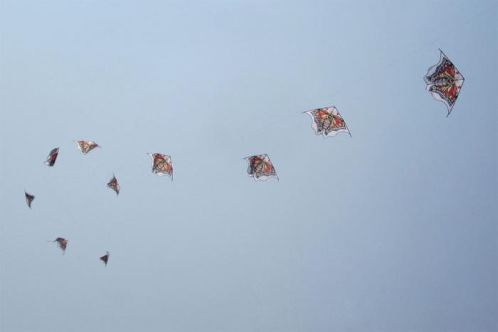 Butterfly Kite Train