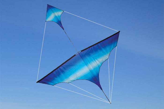 Canard Kite Cool