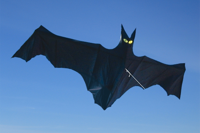 Bat 11 ft.
