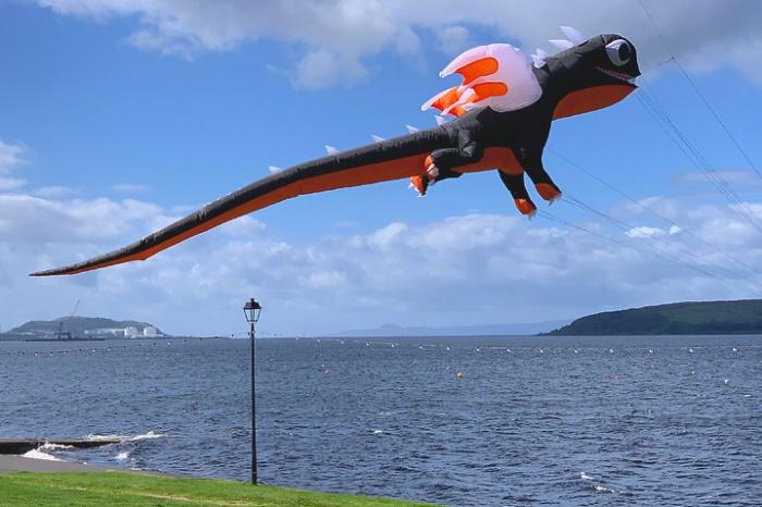 Mini Dragon orange-schwarz