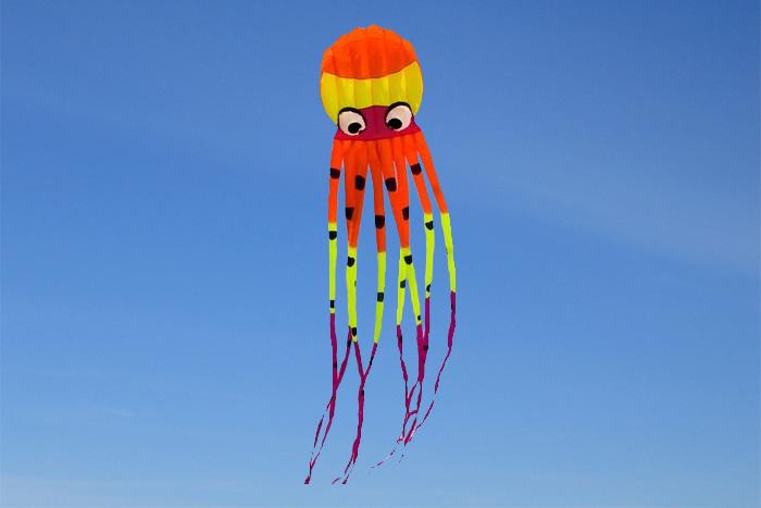 Octopus Kite 8m New Design