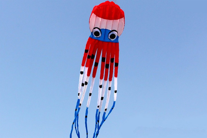 Octopus Kite 8m New Design rot