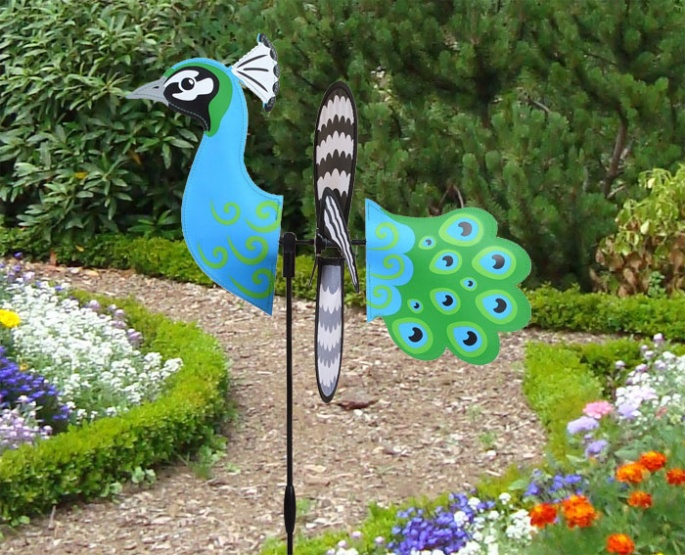 Petite windmill peacock