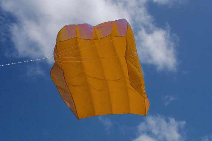 Peter Lynn Pilot Kite 4.5m² gold