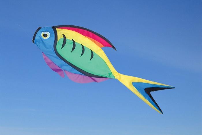Rainbow Surgeon Fish Windsock